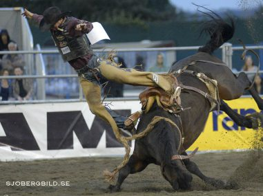 Cort Scheer of the United States competes in Saddle Bronc Riding at the annual Cloverdale Professional Rodeo 2015 in Cloverdale, BC, Canada  16th. May. 2015